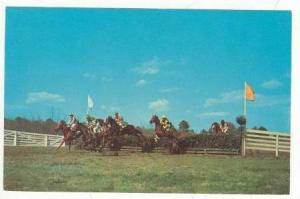 Clearing the Hurdles, Colonial Cup, Camden,South Carolina, 40-60s