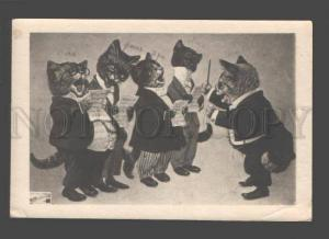 3086470 Dressed CAT Opera by THIELE vintage PHOTO Russia RARE