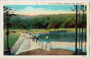 Lake & Spillway, Allegany State Park NY
