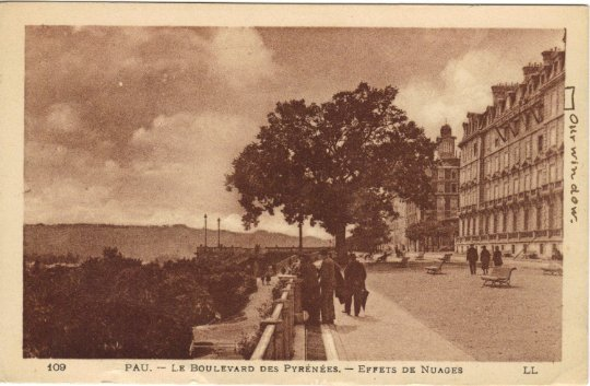 Le Boulevard Of Pyrenees Sienna Colored Vintage French Postcard