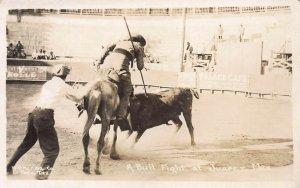 Bullfight at Juarez, Mexico, Early Real Photo Postcard, Unused