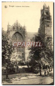 Postcard Old Bruges Cathedrale Saint Sauveur