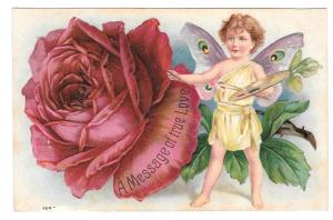 Butterfly Child Red Rose Artists Palette Fantasy Postcard