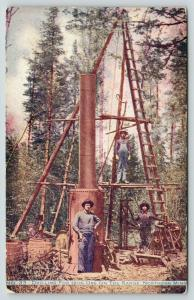 Northern Minnesota~Drilling for Iron Ore on the Range~Three Workers on Rig~1910