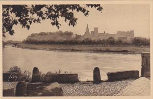 France Avignon Le Rhone et le Chateau des Papes