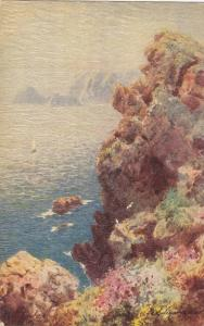 TUCK 7069, Pictureques Cornwall, Old Lizard Head, England, United Kingdom, 00...