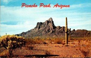 Arizona Picacho Peak Giant Saguaro Cactus 1969