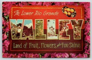 Rio Grande Valley Texas~Large Letter CHROME Postcard~Pink Flowers~Oranges~1960s