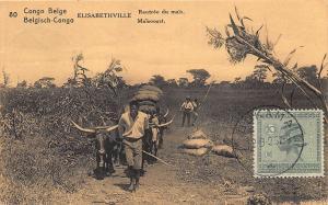 Elizabethville British Congo Africa Postally Used Postal Card