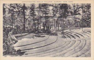 Amphitheatre Wells College Aurora New York