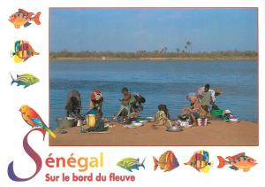 Charms and colors of Senegal postcard