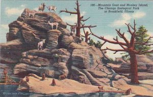 Illinois Brookfield Mountain Goat and Monkey Isalnd The Chicago Zoological Pa...