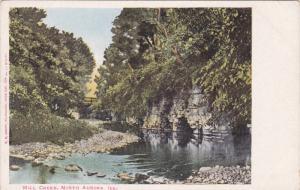 Mill Creek, NORTH AURORA, Illinois, 00-10's