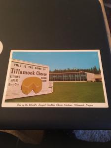 Vtg Postcard: Tillamook Cheese Factory, Oregon