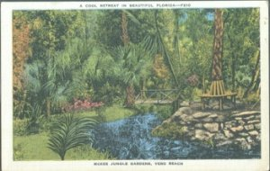 VERO BEACH - view of tropical pond & trees at McKee Jungle Gardens, 1930s