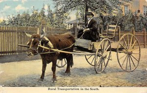 Horse Drawn Rural Transportation in the South 1912