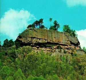Corbeau Rock Red River Gorge Daniel Boone Forêt Slade Ky Unp Vtg Chrome Postale