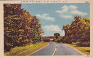 New York Greetings From East Durham Curteich