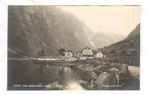 RP: Parti Fra Gudvangen i Sogn, Norway / Norge , 1910s