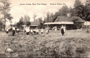 Pennsylvania Pocono Pines Pine Tree Camp Junior Camp Albertype