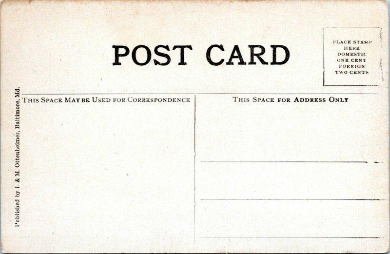 1909 President Theodore Roosevelt Leaving Capitol Washington DC Ewing Postcard