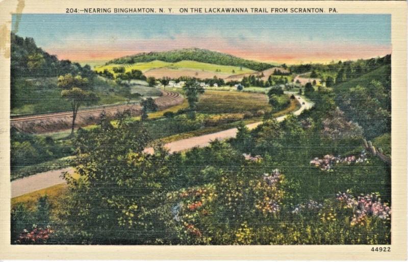 Near Binghamton NY On Lackawanna Trail From Scranton PA Vintage Postcard D21
