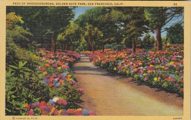 California San Francisco Path Of Rhododendrons Golden Gate Park