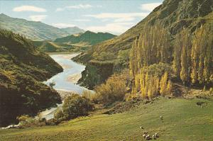 New Zealand Queenstown Arthur's Point Shotover River