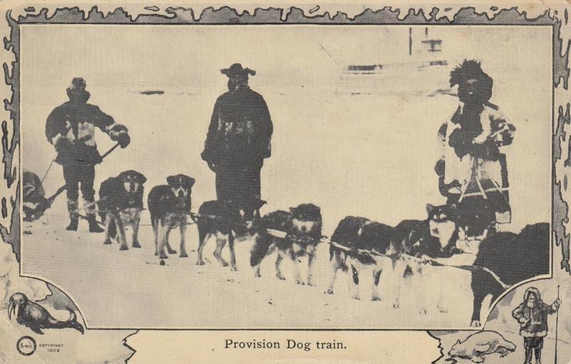 NORTH POLE, 1900-10s; Provision Dog Train