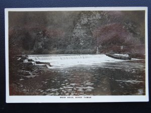 Cornwall RIVER TAMAR Weir Head - Gunnislake - Old RP Postcard W.B.