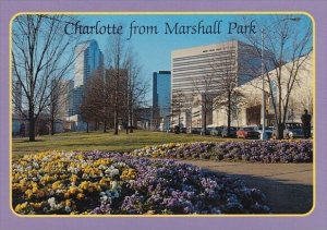 Charlotte From Marshall Park Charlotte North Carolina