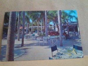 palm gardens restaurant clearwater florida