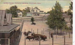 Ohio Cincinnati Buffalo Range Zoological Gardens 1911