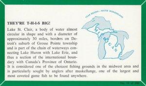 MICHIGAN, 1940-60s; Fact Card, No. 19 of 200, They're T-H-I-S Big! (Fishing)
