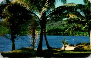 Samoa Peace and Quiet Scene 1969