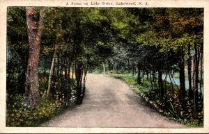 New Jersey Lakewood A Scene On Lake Drive