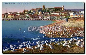 Postcard The Old Cannes Seagulls on the Beach