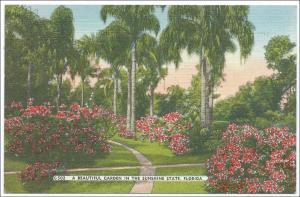 Garden in Florida
