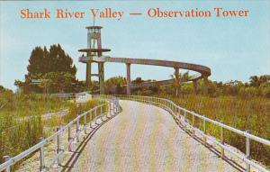 Shark River Valley Observation Tower Everglades National Park Florida