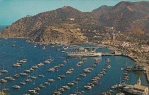 California Catalina Island The Bay At Avalon