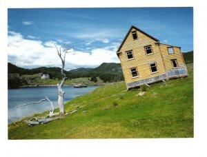British Harbour Trinity Bay, Newfoundland, Large 5 X 7 Postcard