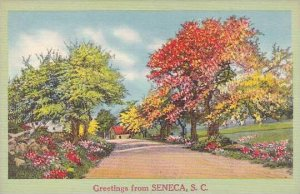 South Carolina Seneca Greetings From Seneca