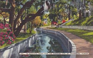 Florida Saint Petersburg In Beautiful Roser Park The Sunshine City