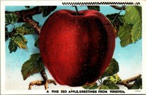 Virginia Postcard GREETINGS - A Fine Red Apple Curteich Linen 1943