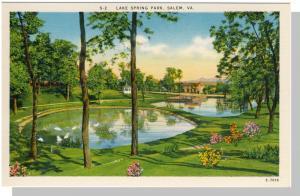 Salem, Virginia/VA Postcard, Lake Spring Park, Near Mint!