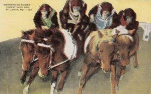 ST. LOUIS, Missouri, 1930-40s; Monkeys on Ponies, Forest Park Zoo