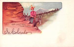 Colorado Greetings Cowgirl Native American Indian On Donkey Postcard J67832