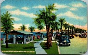 Pensacola, Florida Postcard WAYSIDE PARK - a Favorite Picnic Area Chrome 1954