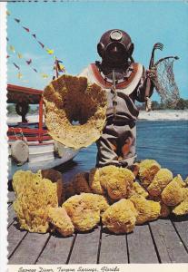 TARPON SPRINGS, Florida, 50-70's ; Sponge Diver With Specimen of Fine Sponges