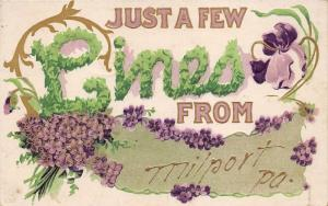 Milport Pennsylvania~Just a Few Lines~Embossed Violets-Forget-me-Nots~1909 Pc